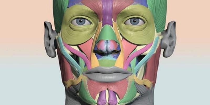Estudo de Caso - Paralisia Facial