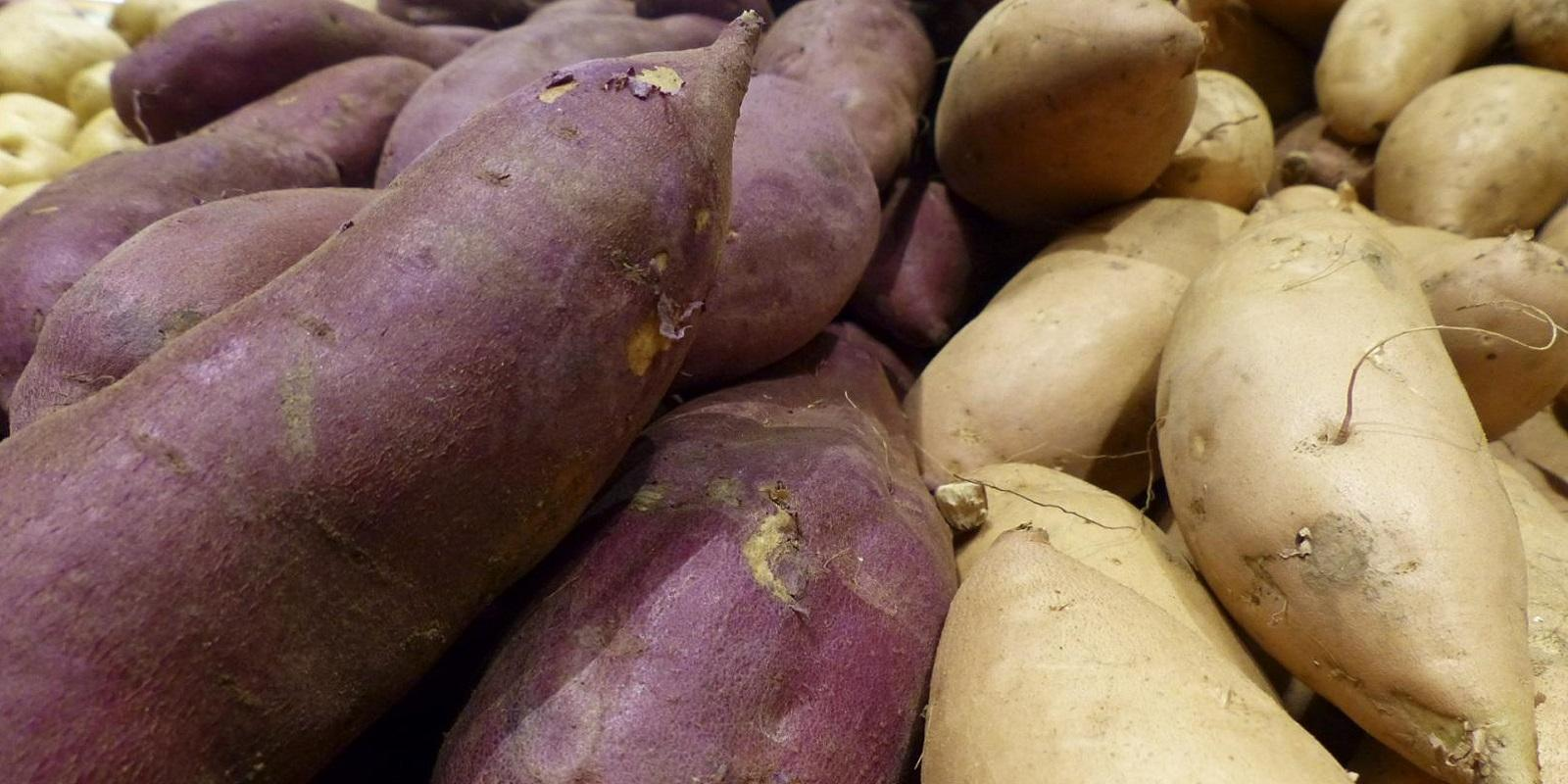 Batata-Doce - Um Superalimento