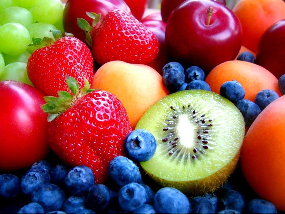 Vegetarianismo e Veganismo – fundamentos e história