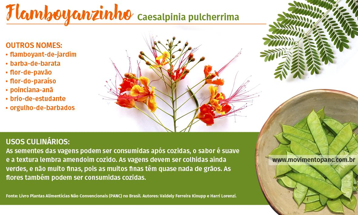 Plantas Alimentícias Não Convencionais (PANCs)