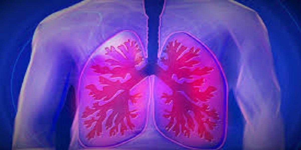 Autocuidados para o Pulmão e Problemas Respiratórios