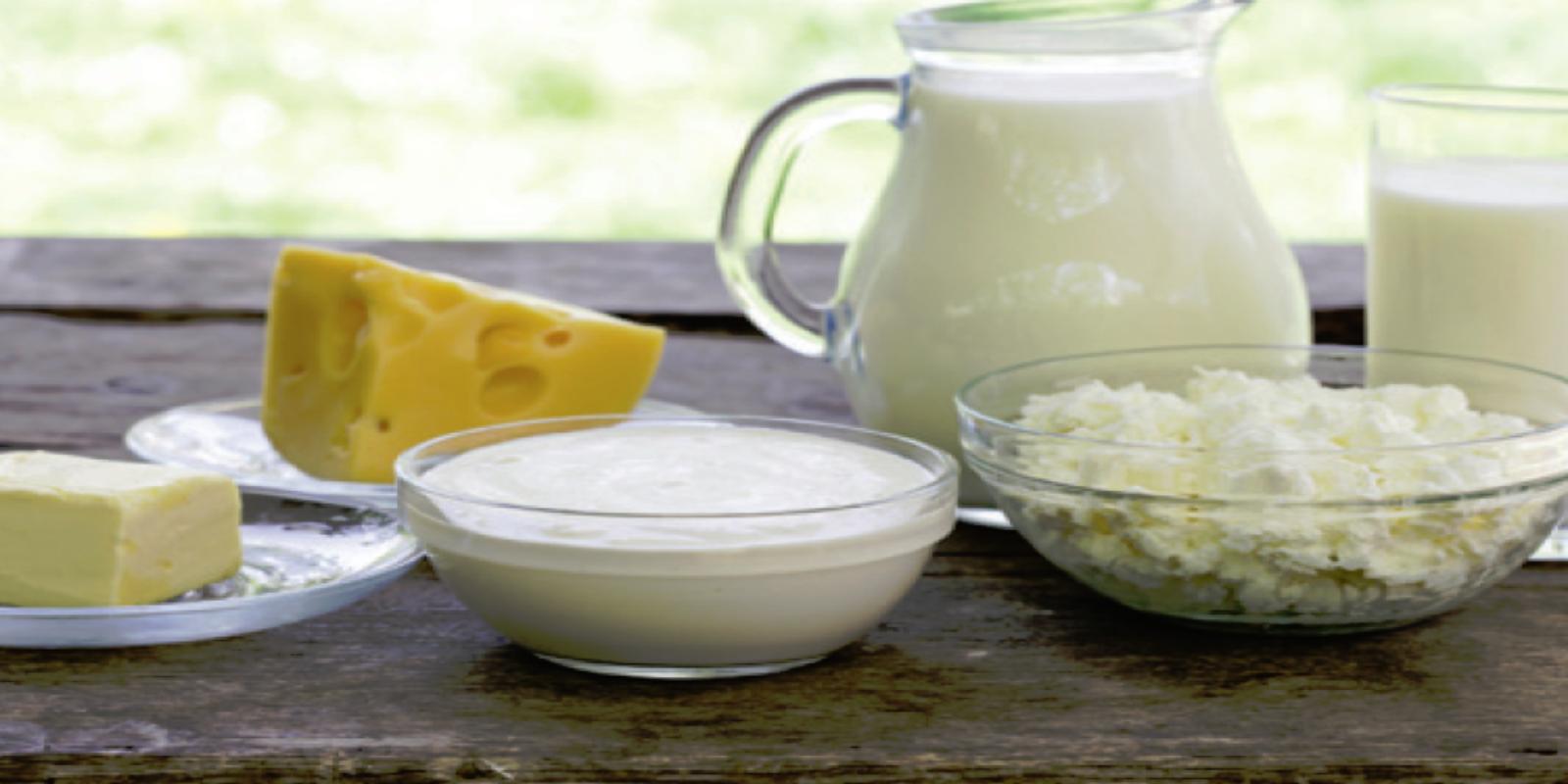 Queijo, Requeijão, Leite e Manteiga veganos - Receitas